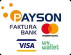 Payson logo